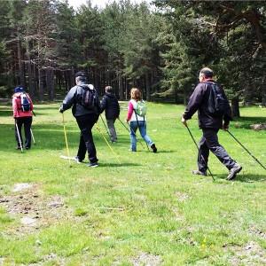 nordic-walking-1