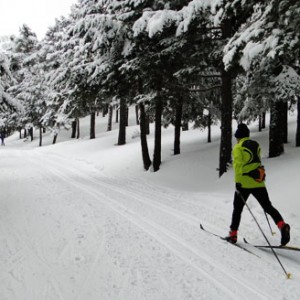 perfecccionamiento esqui de fondo 5